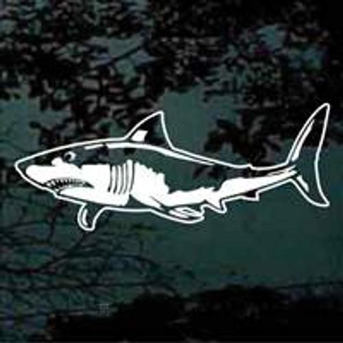 Detailed Shark