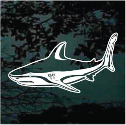 Detailed Bull Shark