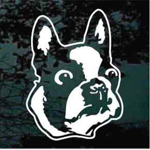 Boston Terrier Head Window Decal