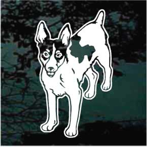 Rat Terrier 04 Window Decal