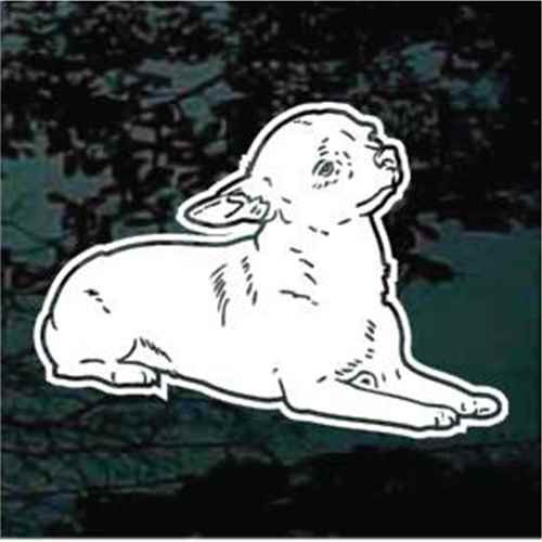 Chihuahua Down Window Decal