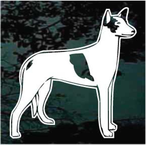 Ibizan Hound 01 Window Decal
