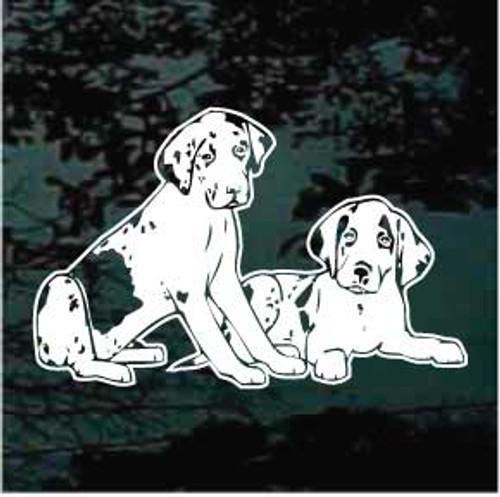 Great Dane Puppies 01