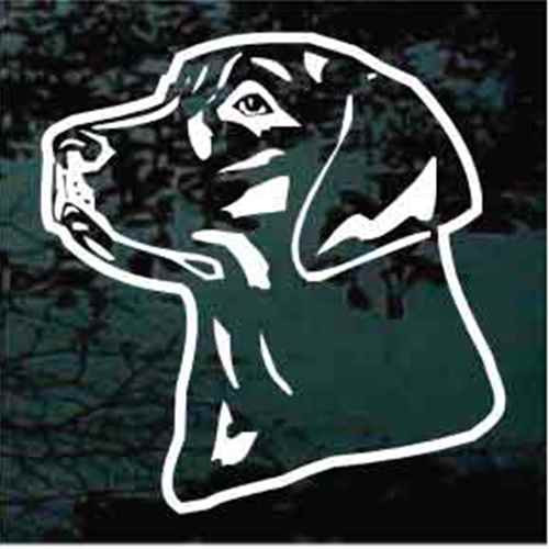 Labrador Retriever Handsome Head Window Decal