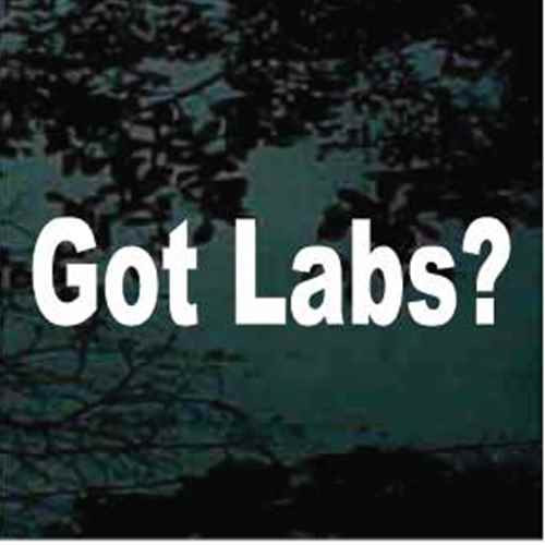 Got Labs? Window Decal