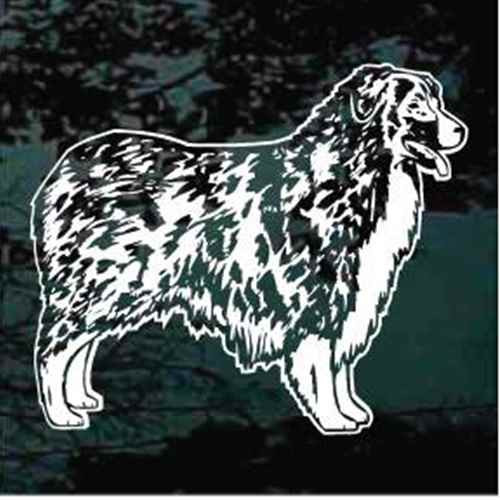 Detailed Australian Shepherd Window Decal