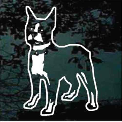 Boston Terrier Facing Window Decal