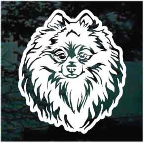 Sweet Pomeranian Head Window Decal