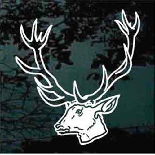 Detailed Mule Deer Head