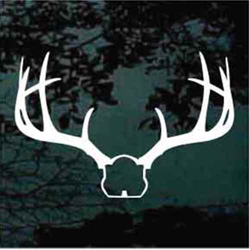 Deer Antlers Mount