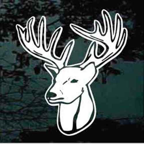 12 Point Buck Deer Head