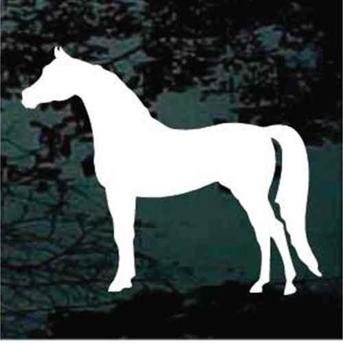 Arabian Horse Standing Silhouette Decals