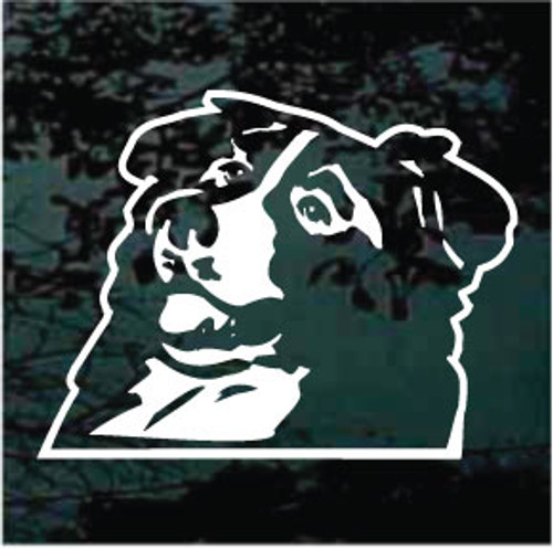 Border Collie Head Window Decal