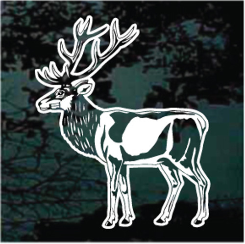 Detailed Caribou