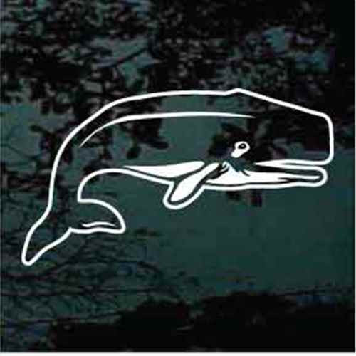 Orca Whale Decals