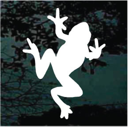Frog 06