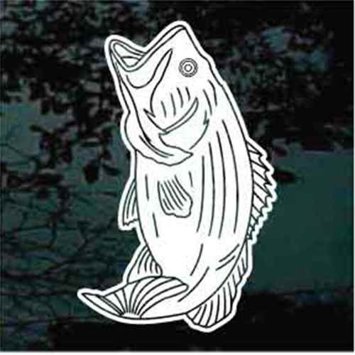 Bass Fish With Details