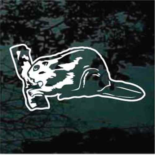 Beaver Gnawing A Log Window Decal