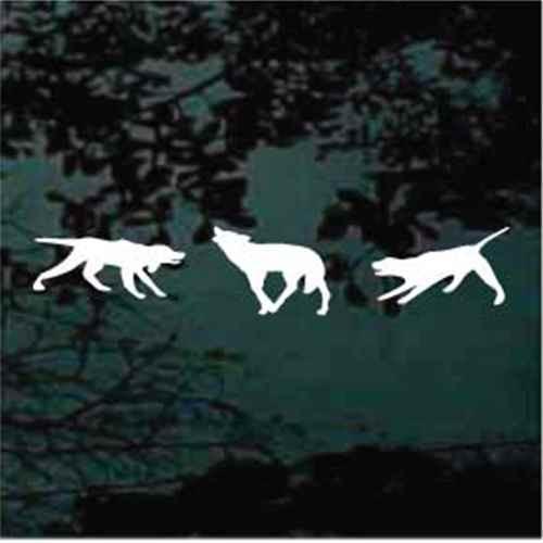 Bayed Coyote Window Decals