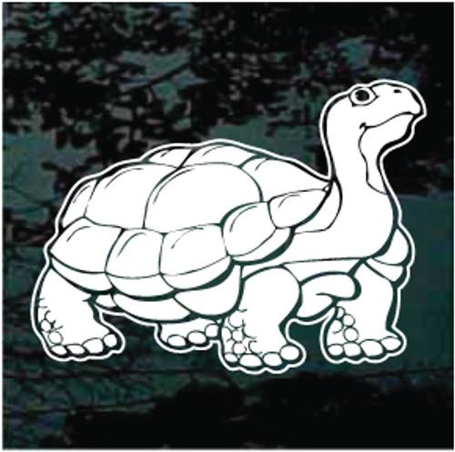 Desert Tortoise 01