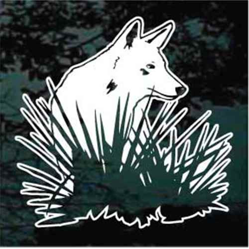 Coyote Hiding In Grass Window Decal
