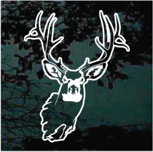 Custom Buck Head
