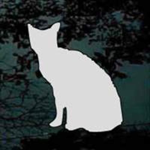 Zombie Cat 01