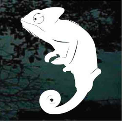 Chameleon Lizard Silhouette Decals