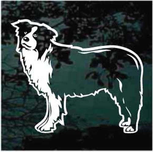 Border Collie Profile Window Decals