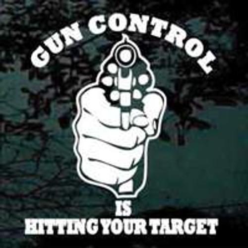 Gun Control Is Hitting Your Target 02