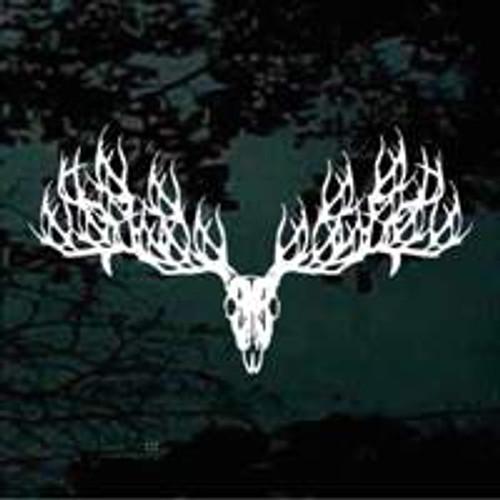 Deer Skull 100 Point