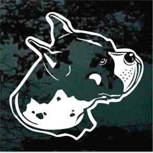 Boxer Head Side View Window Decal