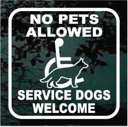 No Pets Allowed 01
