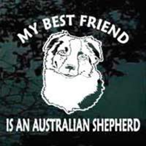 Best Friend Australian Shepherd Head