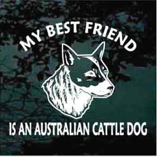 Best Friend Realistic Australian Cattle Dog Head Window Decal