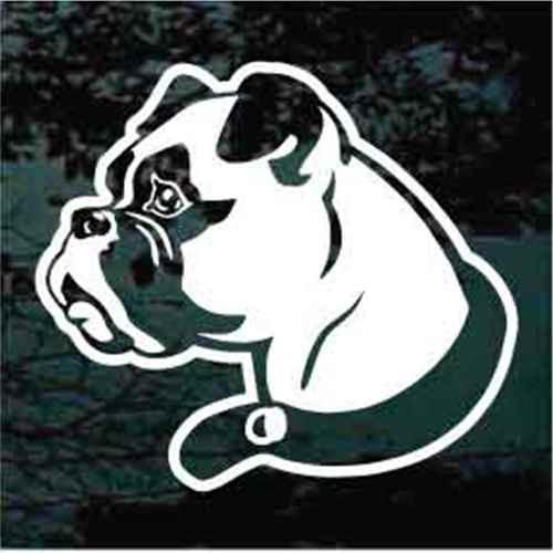 Boxer Head Wearing Collar Window Decal