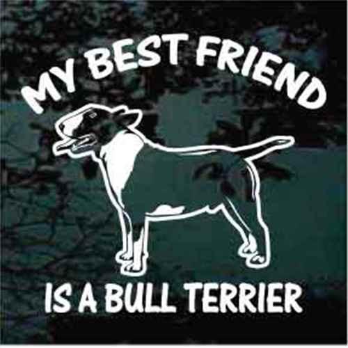 Best Friend Bull Terrier