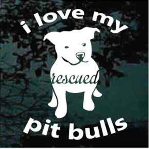 You my pitbull loves to lick consider