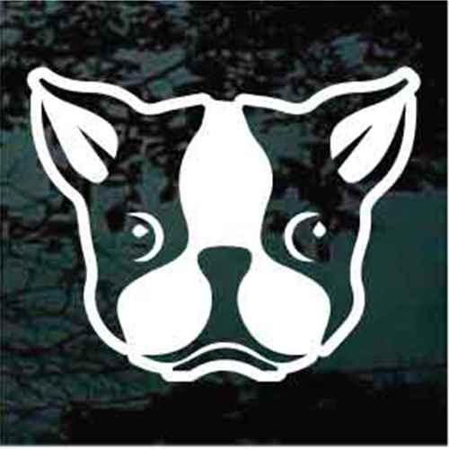 Boston Terrier Face Window Decal