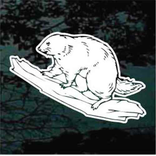 Beaver Sitting On A Log Window Decal