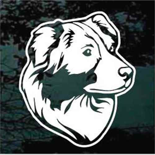 Cute Australian Shepherd Head Window Decal