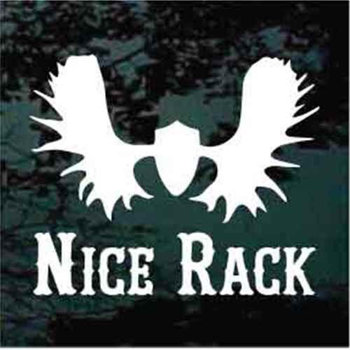 Nice Rack Moose Skull
