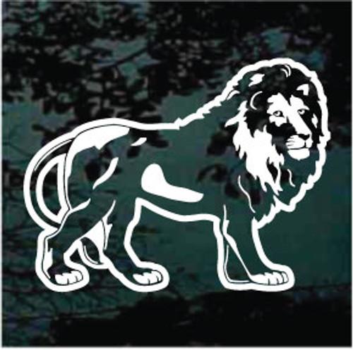 Lion (05)