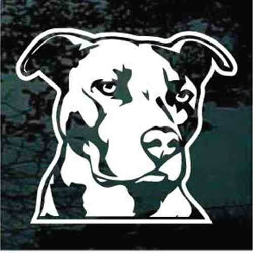 Pitbull Decals for cars