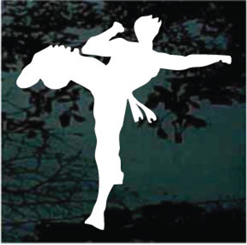 Martial Arts Silhouette 03