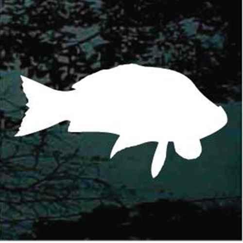 Carp Fish Silhouette