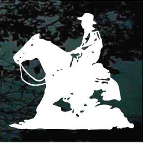 Cowboy Reining Horse