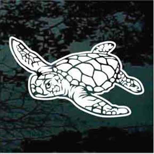 Awesome Sea Turtle Window Decals
