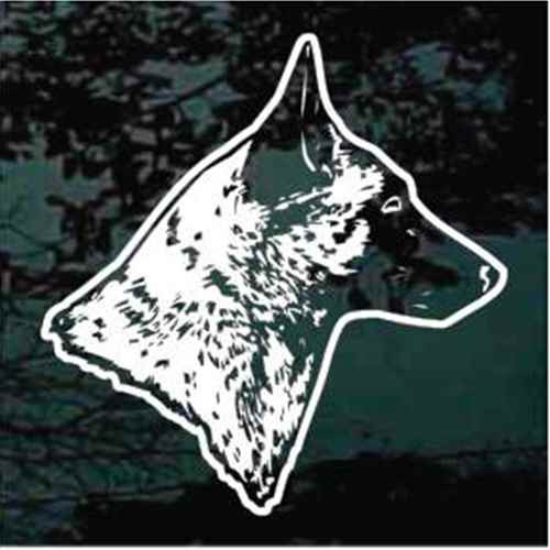 Detailed Belgian Malinois Head Window Decal