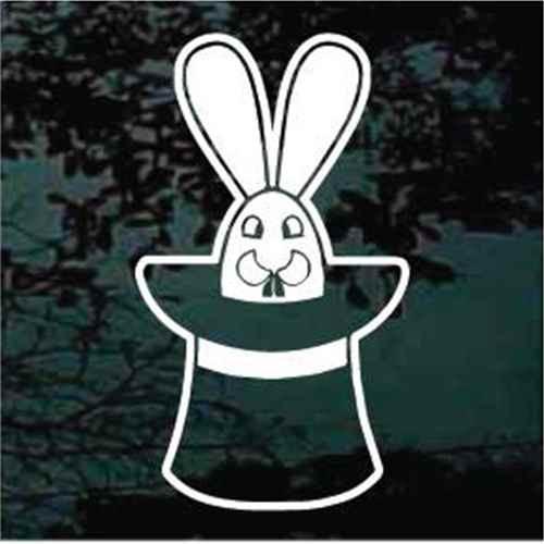 Rabbit In Magic Hat